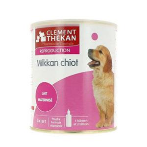 Milkkan-chiot